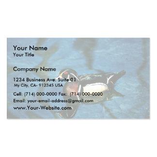 Pato de madera plantilla de tarjeta de negocio