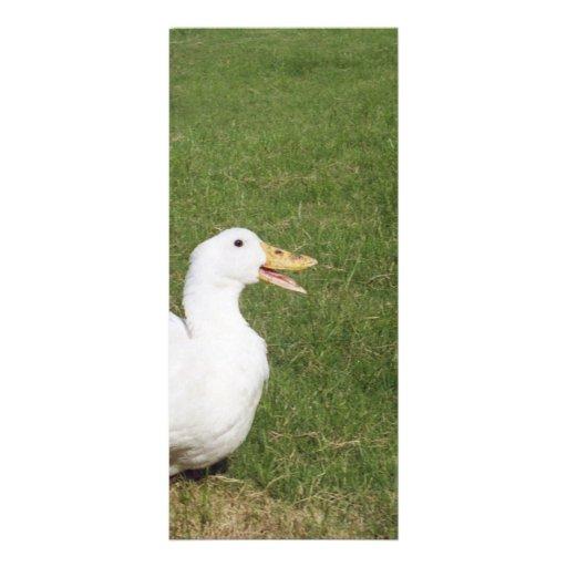 Pato de Pekin con la cuenta abierta en hierba verd Lonas