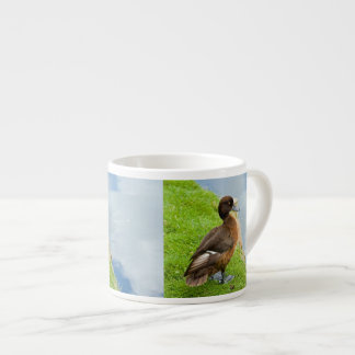 Pato de salto copetudo rojizo femenino en hierba taza espresso