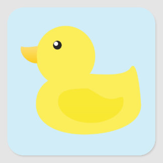 Pato del amarillo del tiempo del baño calcomanias cuadradas
