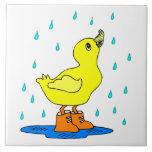 Pato del bebé azulejo