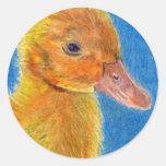 Pato del bebé pegatina redonda