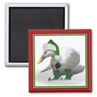 Pato del duende del navidad - el ayudante de Santa Imán Cuadrado