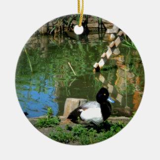 pato del goldeneye en la charca adorno navideño redondo de cerámica