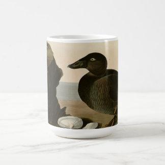 Pato del negro o de la resaca taza