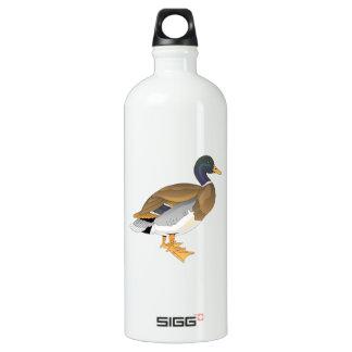Pato del pato silvestre (Drake)