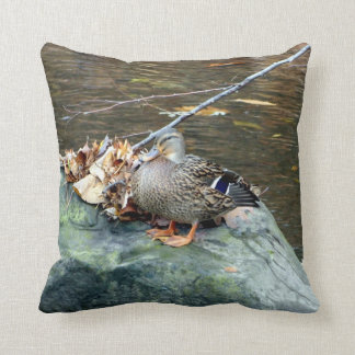Pato del pato silvestre (femenino) en la almohada
