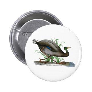 pato del pato silvestre - pájaro salvaje, pins
