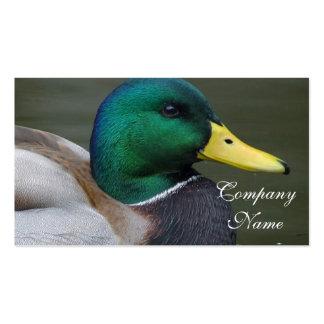 Pato del pato silvestre tarjetas personales