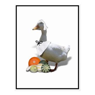 Pato del peregrino de la acción de gracias postal
