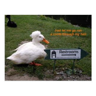 Pato del sitio de resto postal
