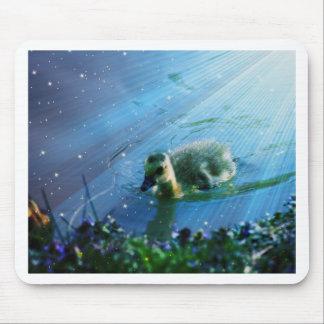 Pato en el agua mousepad