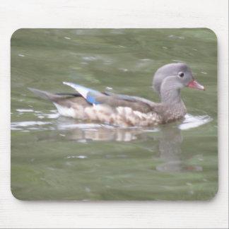Pato en el lago Mousepad