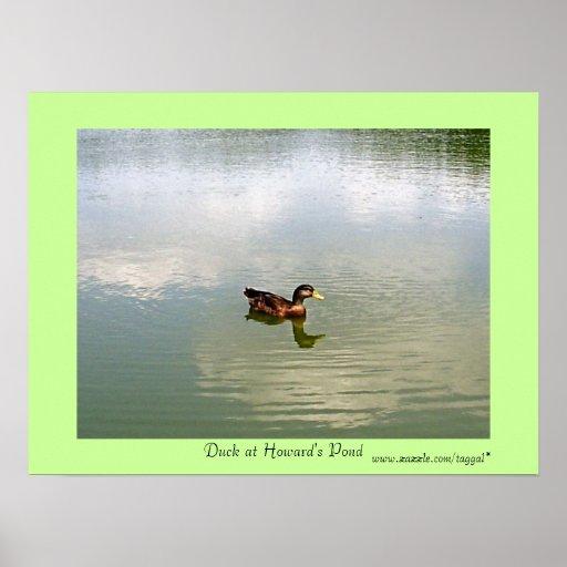 Pato en el poster de la charca de Howard