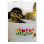Pato en una taza de té tarjeta de felicitación