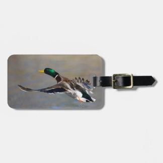 pato en vuelo etiquetas maletas