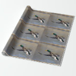 pato en vuelo papel de regalo