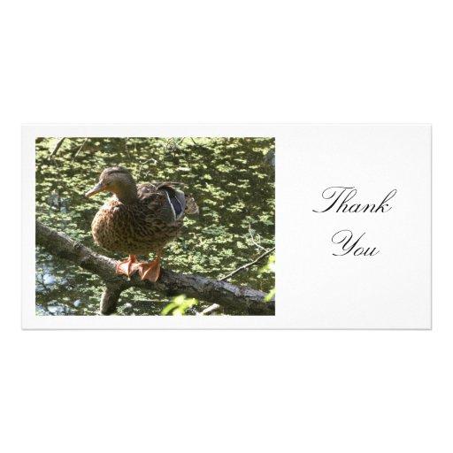 Pato feliz - gracias tarjetas fotograficas personalizadas