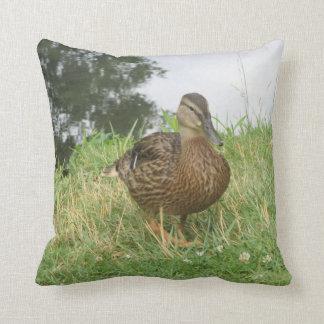 Pato femenino del pato silvestre almohada
