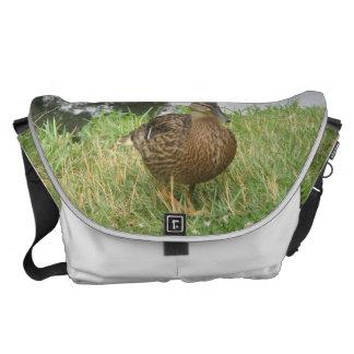 Pato femenino del pato silvestre grande bolsas messenger
