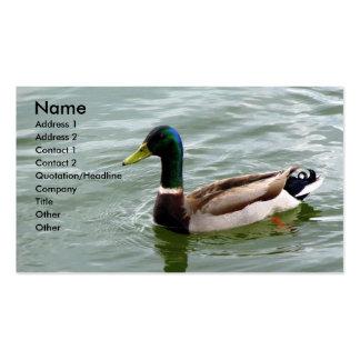 Pato hermoso del pato silvestre tarjeta de negocio