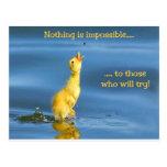 Pato imposible postal
