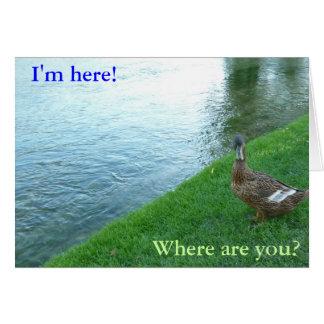 Pato inquisitivo tarjeta de felicitación