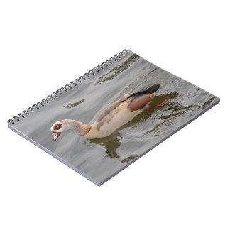 Pato inusual cuadernos