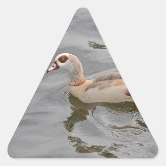 Pato inusual pegatina triangular