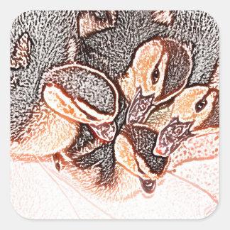 pato lindo del bebé del bosquejo de los anadones pegatinas cuadradases