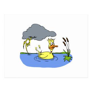 Pato mareado postal
