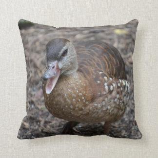 pato marrón quacking en la cámara cojin