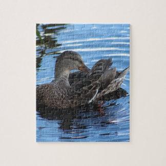 Pato Puzzle Con Fotos
