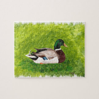 Pato que se sienta en la pintura de la hierba, rom rompecabeza