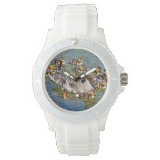 Pato Reloj
