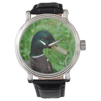 Pato Relojes De Mano