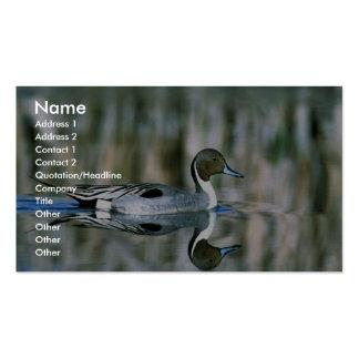 Pato rojizo septentrional tarjetas de visita