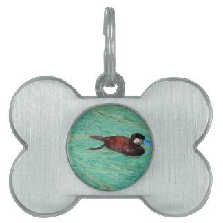Pato rubicundo norteamericano II Placa De Mascota