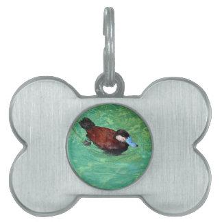 Pato rubicundo norteamericano III Placas De Mascota
