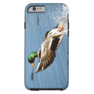 Pato salvaje - caso del iPhone 6 Funda De iPhone 6 Tough