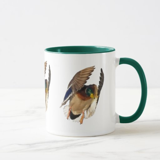 Pato salvaje del pato silvestre que aterriza el taza