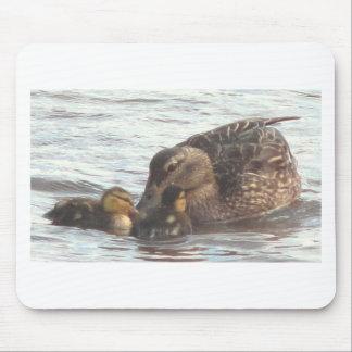 Pato silvestre de la madre y dos bebés alfombrilla de ratones