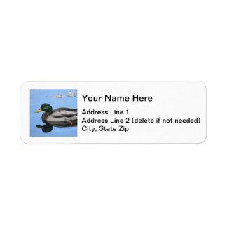 Pato silvestre etiquetas de remite