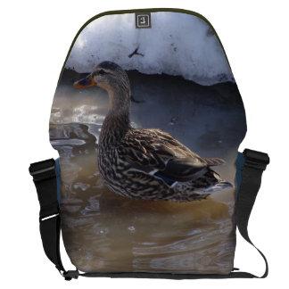 Pato silvestre femenino bolsas messenger