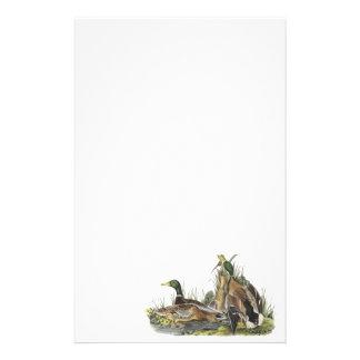 Pato silvestre, Juan Audubon Papeleria De Diseño