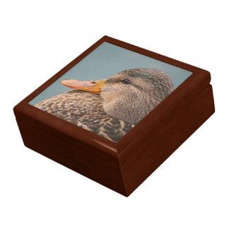 Pato silvestre Pato-Femenino Caja De Recuerdo