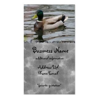 Pato silvestre tarjetas de negocios