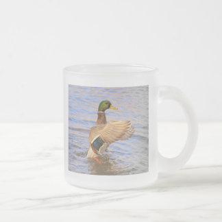 Pato silvestre tazas de café