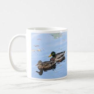 Pato silvestre taza clásica