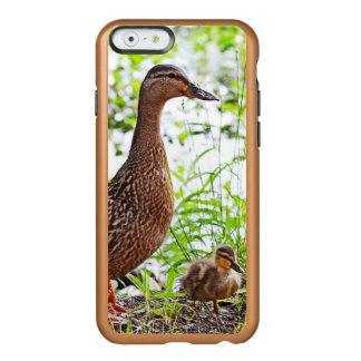Pato silvestre y anadones de Shirley Taylor Funda Para iPhone 6 Plus Incipio Feather Shine